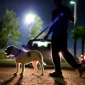 "Blue Nylon Universal Double Sided LED 58"" Light up Leash - Provides Great Safety!"