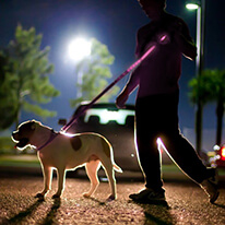 "Pink Nylon Universal Double Sided LED 58"" Light up Leash - Provides Great Safety!"